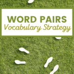 pairs of shoes on green grass with title word pairs vocabulary strategy