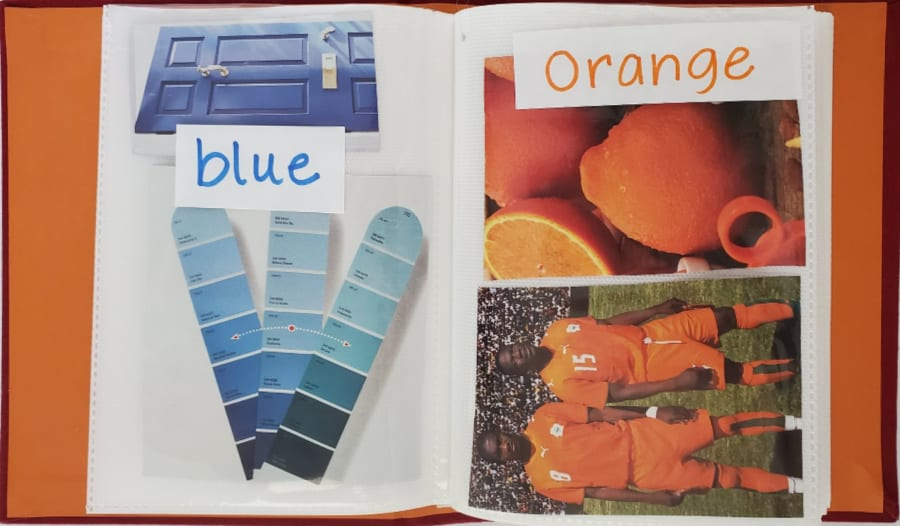 pictures of blue and orange objects in a small photo album