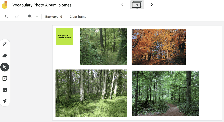 jamboard with pictures of forests